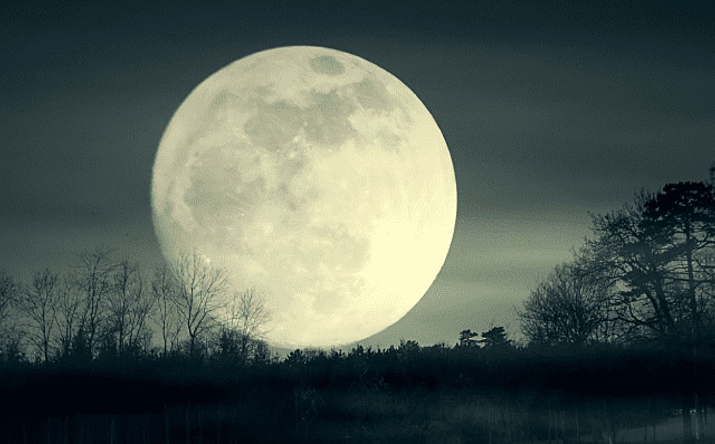Full Moon Friday – The State Club | Raleigh, NC